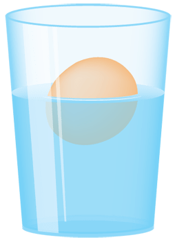 Floating Egg Science Fun