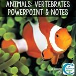 vertebrates powerpoint