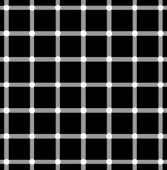 This picture is an example of a scintillating grid illusion. Discovered in 1994 by E. Lingelbach, it is similar to the Hermann grid illusion. When looking at the grid, dark dots seem to appear and disappear at random.