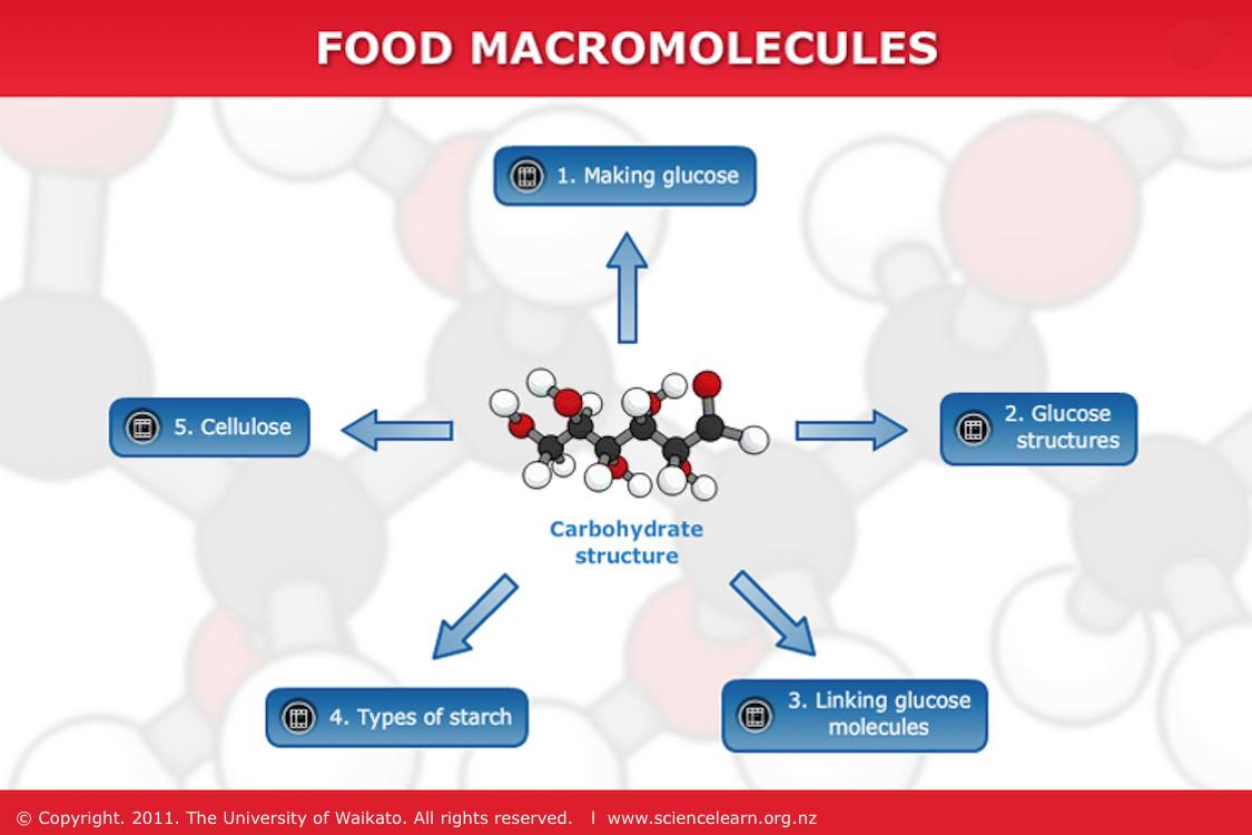 small resolution of transcript making glucose