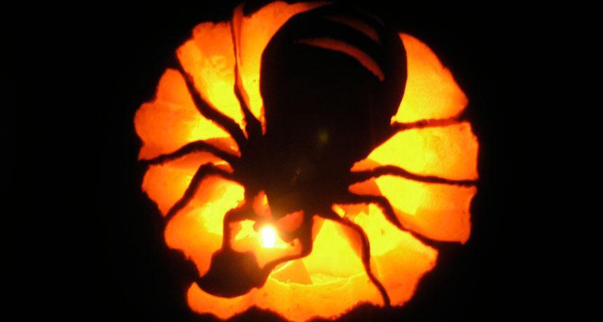ten real life halloween