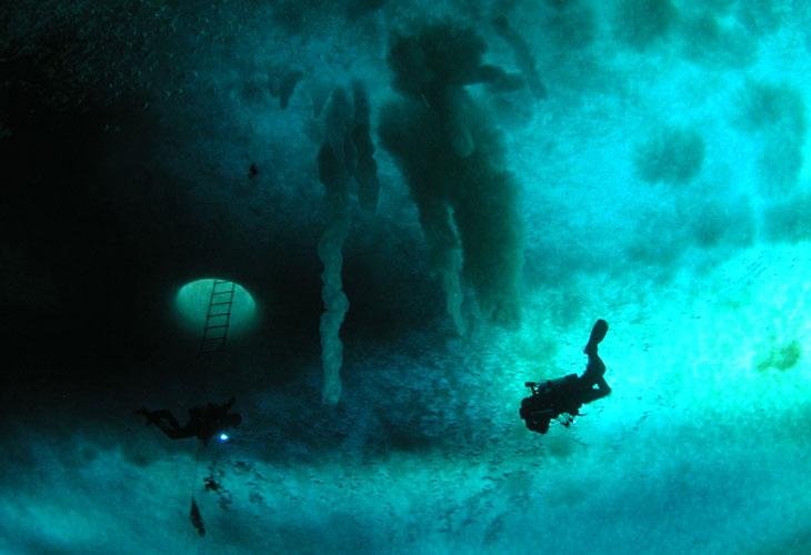 Antarctic scuba diver