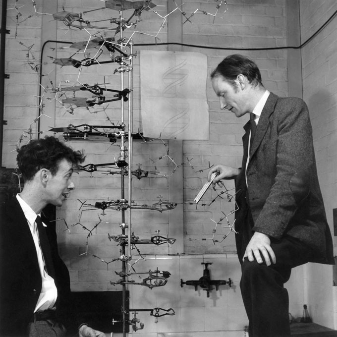 black and white photo of James Watson and Francis Crick