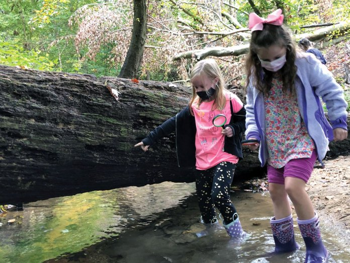 a photo of a downed tree in a forest, two young girls wearing face masks walk alongside the tree