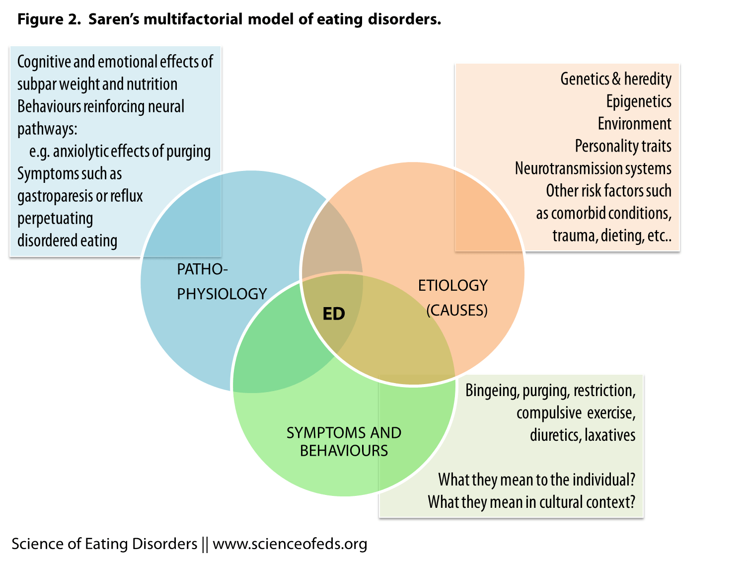 Etiology Of Eating Disorders A Model Of Empirical
