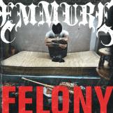 Felony (2009)