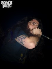 Wormed+Fermento+Human Carnage+Phrymerial21