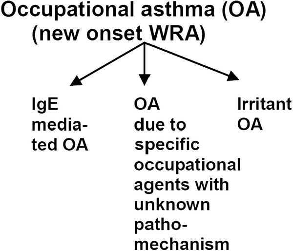 Bronchial asthma and COPD due to irritants in the