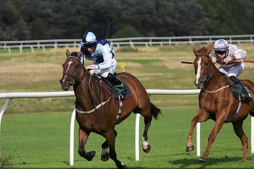 horse_race2