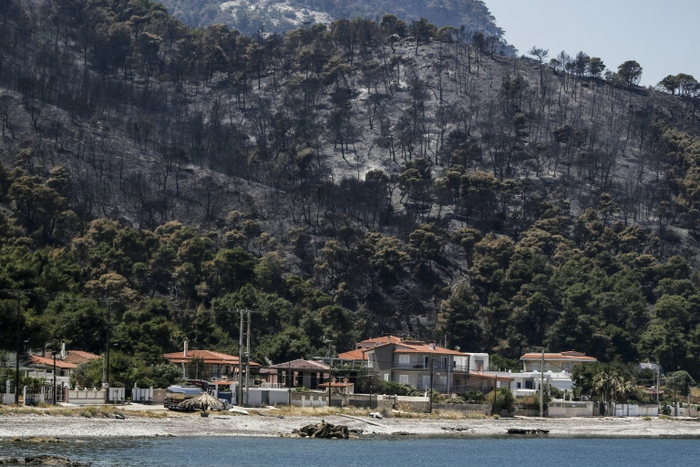 Forest area burned by fire on May 22, 2021 in Mavrolimni, west of Athens, Greece (Eurokinissi / AFP - Giorgos KONTARINIS)