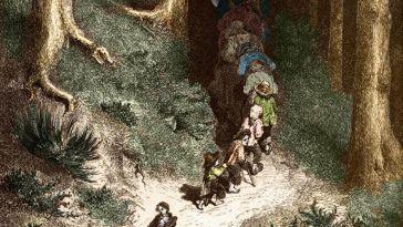 Forêt : l'inquiétant royaume du merveilleux