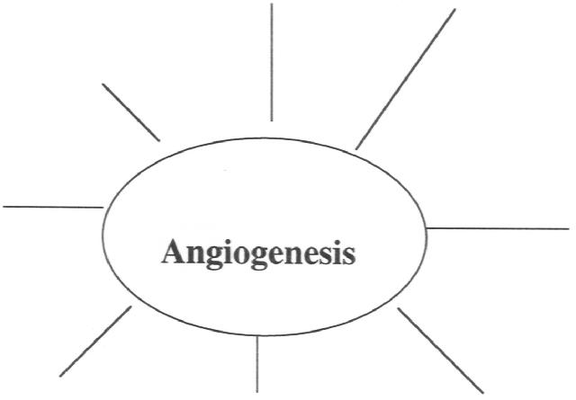 How can we target tumor angiogenesis?