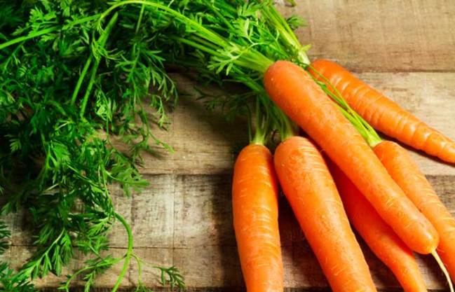 carrot.sciencetreat.com