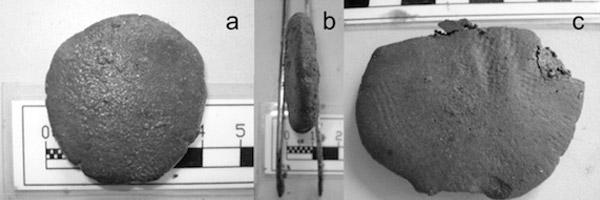 De pillen. Foto's: PNAS/Giachi et. al.