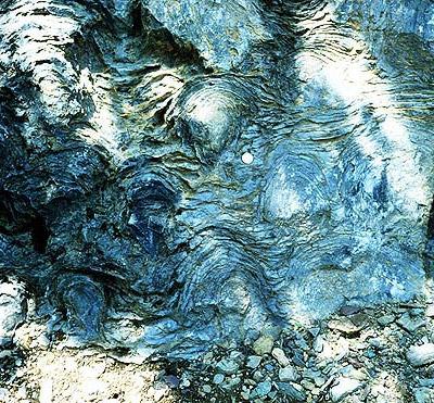 Stromatoliet, met de zo kenmerkende kronkelige laagjes. Afbeelding: P. Carrara / NPS.