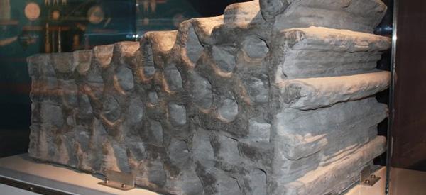 Het met behulp van de 3D-printer vervaardigde bouwblok. De celstructuur is goed zichtbaar. Foto: ESA.