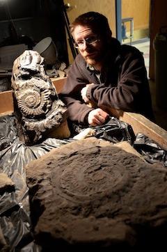 Enkele van de grootste fossiele cirkelzaag-vormige kaken die in het verleden zijn teruggevonden. Foto: Ray Troll.