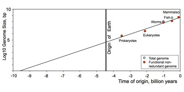 Het ontstaan van leven. Afbeelding: afkomstig uit het paper van Sharov en Gordon - arXiv:1304.3381.