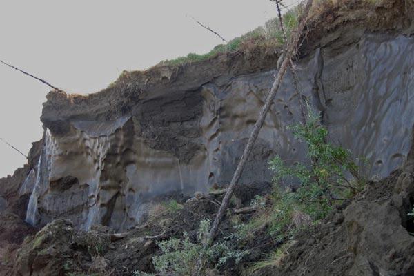 Hier ziet u een rivierbank waarin yedoma-permafrost blootligt. Afbeelding: Jorien Vonk.