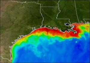 Rode gebieden zijn wateren met minder zuurstof dan gele, groene of blauwe gebieden.