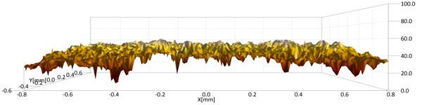 De structuur van het oppervlak van een zeekoetei.