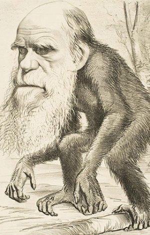 Een karikatuur van Charles Darwin, verschenen in 1871. Afbeelding: University College London.