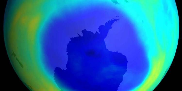ozon2