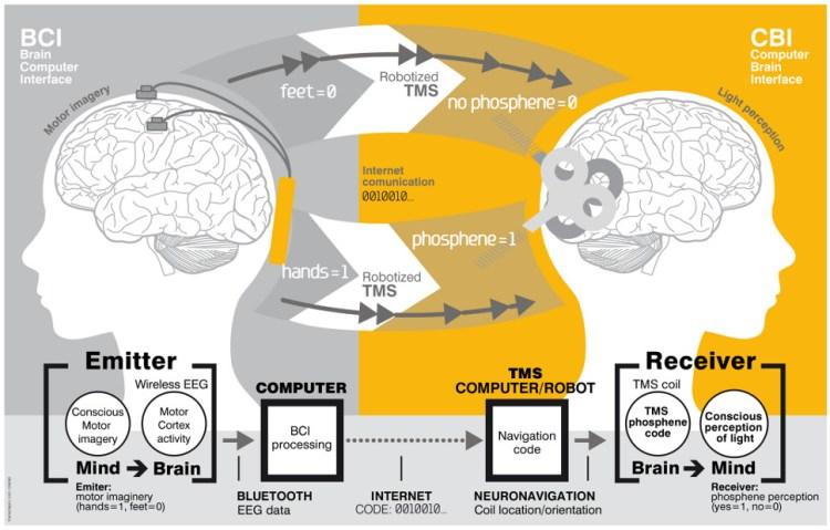 Een tekening van hoe de hersenen - via internet - aan elkaar zijn gekoppeld.