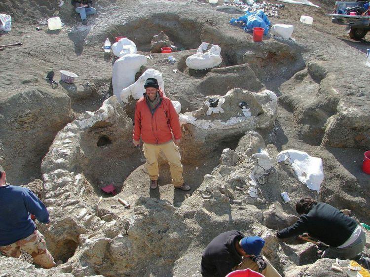 Onderzoeker  Kenneth Lacovara tussen de botten van 'zijn' dinosaurus.