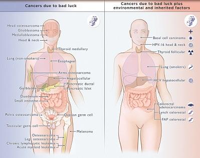 Welke kankers ontstaan door pech? Het staat in deze afbeelding! Wanneer iemand niet rookt, maar toch longkanker krijgt, is dit pech. Maar wanneer iemand rookt, dan kan het een combinatie zijn van pech en omgevingsfactoren.