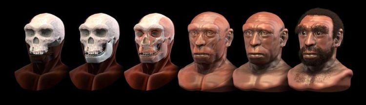 Een reconstructie laat zien hoe Homo heidelbergensis er wellicht heeft uitgezien. Afbeelding: Cicero Moraes (via Wikimedia Commons).