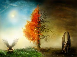 Wat is er na de dood? Christenen geloven dat er een nieuwe aarde komt, waar plek is voor mensen die in Jezus geloven.