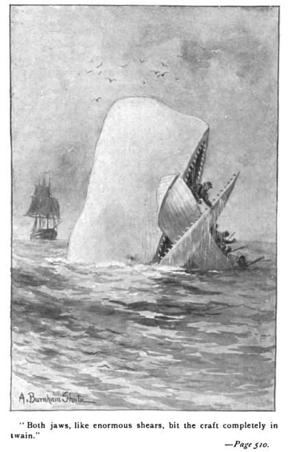 Een tekening uit een vroege editie van Moby-Dick, een roman van Herman Melville.