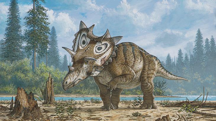 De infectie moet zoveel pijn hebben veroorzaakt dat de dinosaurus niet op zijn voorpoot kon staan. Afbeelding: © Mike Skrepnick.