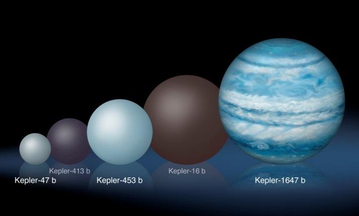 Hier zie je verschillende door Kepler ontdekte planeten die rond twee sterren draaien. Kepler-1647b springt er qua omvang direct uit. Afbeelding: Lynette Cook.