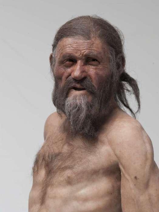 Zo moet de IJsman er bij leven uit hebben gezien. Hij was 1.60 meter hoog en woog ongeveer 50 kilogram. Hij werd waarschijnlijk 45 jaar, een vrij hoge leeftijd in die tijd. Afbeelding: South Tyrol Museum of Archaeology / EURAC / Marco Samadelli-Gregor Staschitz.