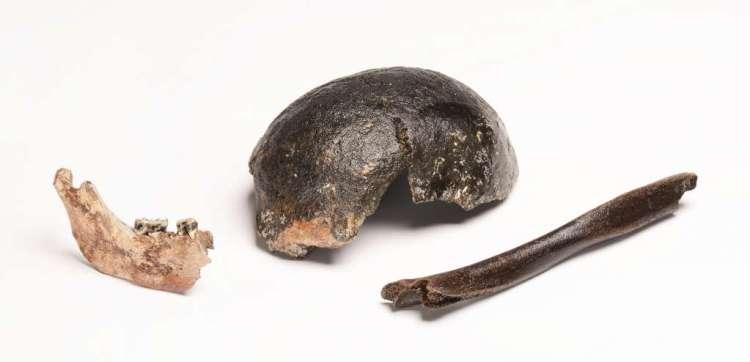 Hier zie je stukjes van een opperarmbeen, onderkaak en schedel. Deze botresten zijn tijdens het onderzoek gebruikt en stammen uit de periode tussen 9000 en 6000 voor Christus. Afbeelding: Rijksmuseum van Oudheden.