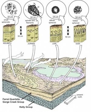 microben
