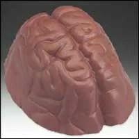 Chocolate Brain Health Function