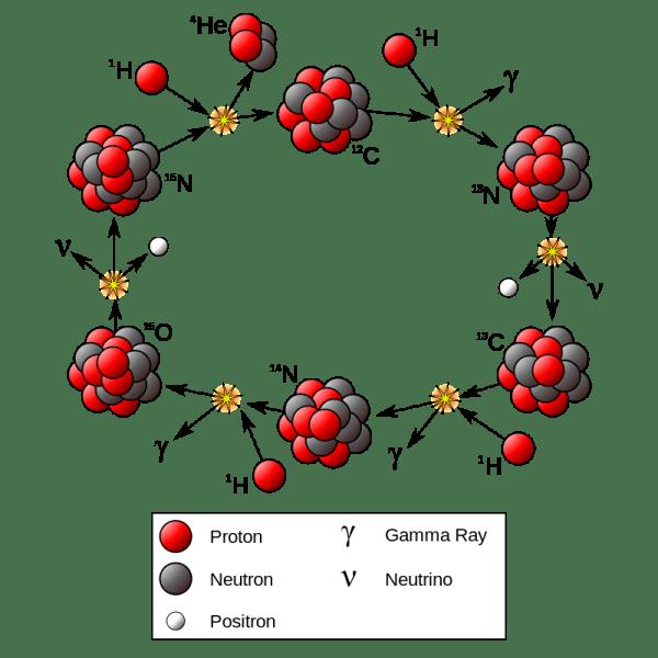 Il ciclo CNO. (Fonte Wikimedia Commons)