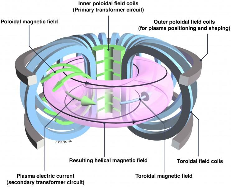 """Schema di funzionamento di un Tokamak: due serie di magneti generano un campo toroidale e un campo poloidale, che insieme formano un campo magnetico """"spiraleggiante"""" che confine il plasma. Scaldando sufficientemente il plasma si innesca la fusione nucleare e si può raccogliere calore da convertire in energia elettrica. Immagine di Euro-Fusion."""
