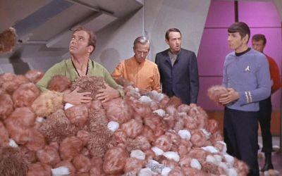 """Cos'è la crescita esponenziale. Ovvero """"E se i Vulcaniani ci avessero sempre preso in giro?"""""""