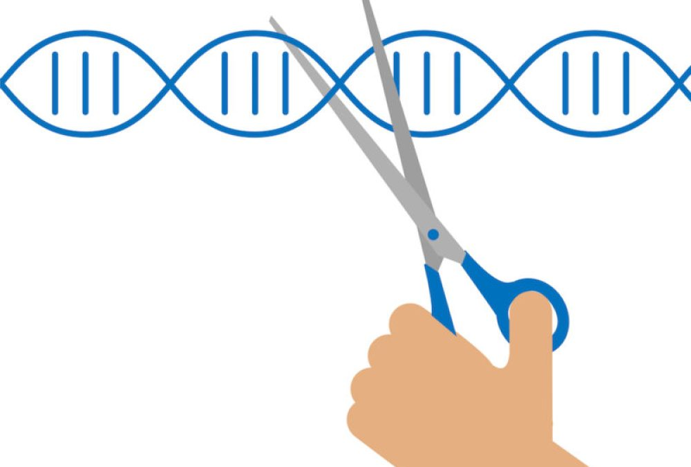 Mille e una CRISPR
