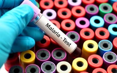 Evoluzione della resistenza e competizione: il caso malaria