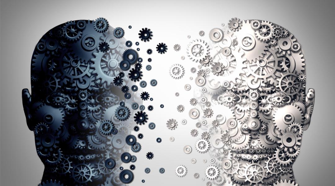 Un cervello diviso in due