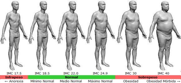 Resultado de imagen de indice de grasa corporal