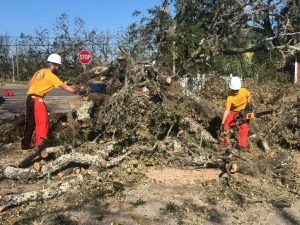 Working with other Scientology volunteer ministers in North Carolina, taking a chainsaw to fallen trees after the hurricaneWorking with other Scientology volunteer ministers in North Carolina, taking a chainsaw to fallen trees after the hurricane