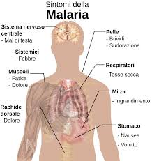 MALARIA05