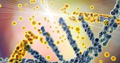 Adroterapia per il trattamento dei tumori