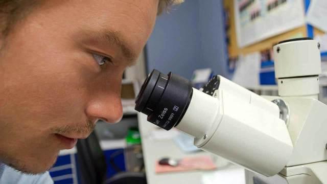 Risultati immagini per microscopio